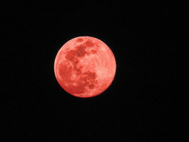 影 月 食 満月 半 11月30日 双子座満月